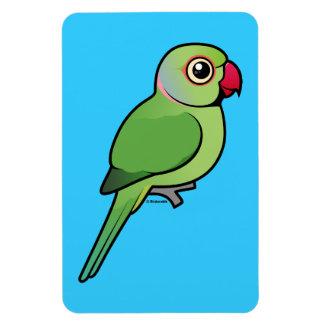 Parakeet Rosa-anillado Imán