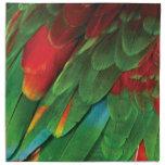 Parakeet Servilletas Imprimidas
