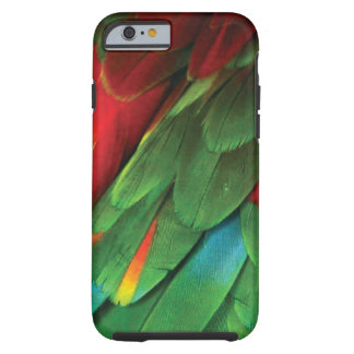 Parakeet Tough iPhone 6 Case