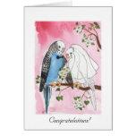 Parakeet Wedding card