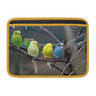 Parakeets Budgies | Birds Photo Wildlife Sleeve For MacBook Air