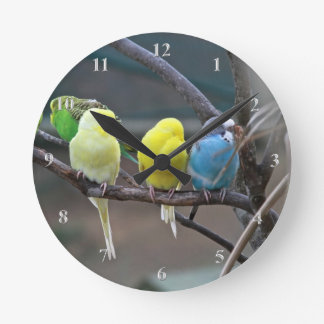 Parakeets Budgies Parrots Birds Bright Bird Lovers Round Clock