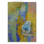 Parakeets de Feng Shui Tarjeta De Felicitación