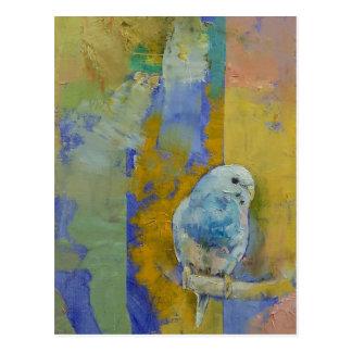 Parakeets de Feng Shui Postal