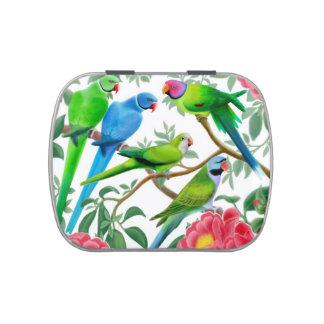 Parakeets del mascota en lata del caramelo de los  frascos de dulces