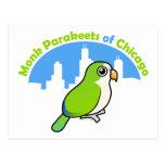 Parakeets del monje de Chicago Postales