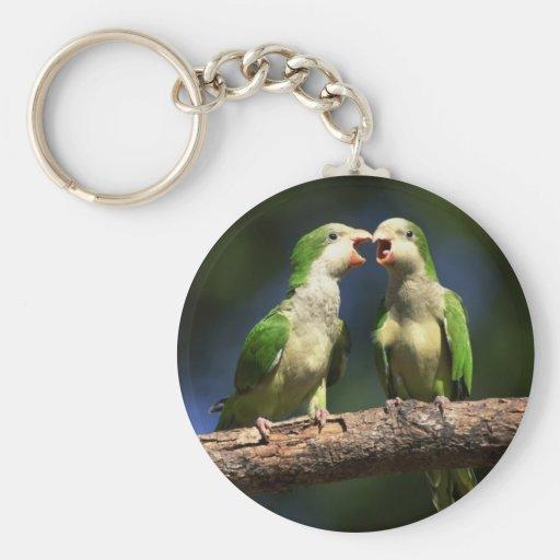 Parakeets del monje llavero redondo tipo pin