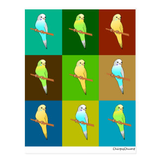 Parakeets in Earth toned Squares Post Cards