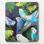 Parakeets y helechos Mousepad de Budgie