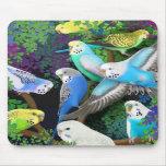 Parakeets y helechos Mousepad de Budgie Alfombrilla De Ratón
