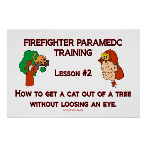 paramedic cat in tree poster
