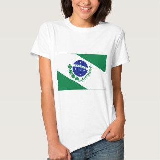 Paraná, bandera del Brasil Remeras