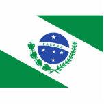 Parana, Brazil flag Photo Cut Out