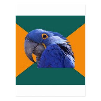 Paranoid Parrot Bird Advice Animal Meme Postcard