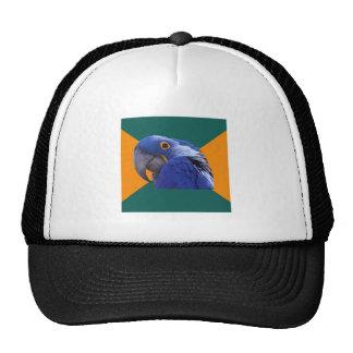Paranoid Parrot Bird Advice Animal Meme Trucker Hat