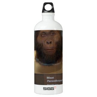 Paranthropus boisei; museum exhibit aluminum water bottle