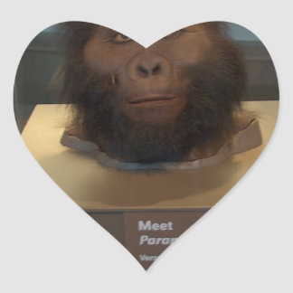 Paranthropus boisei; museum exhibit heart sticker