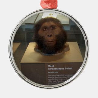 Paranthropus boisei; museum exhibit metal ornament