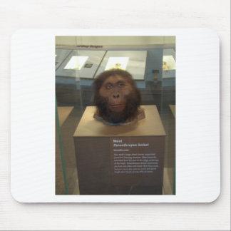 Paranthropus boisei; museum exhibit mouse pad