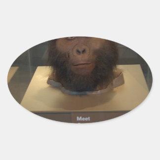 Paranthropus boisei; museum exhibit oval sticker