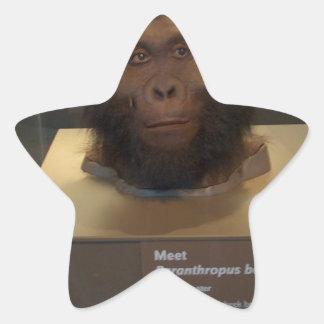 Paranthropus boisei; museum exhibit star sticker
