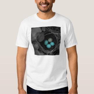 Parasitismo de la jerarquía camisas
