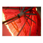 Parasol Light Postcard
