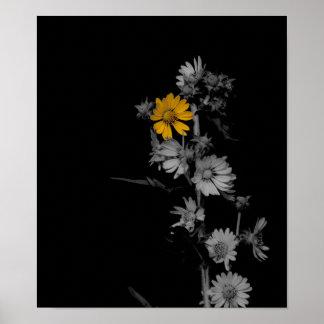 Parcialmente poster blanco y negro de la flor de C