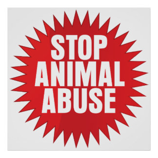 Pare el abuso animal póster