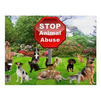 Pare el abuso animal tarjeta postal