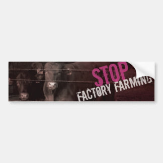 Pare el cultivo de la fábrica - rosa pegatina de parachoque