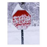 ¡Pare el nevar! Postal