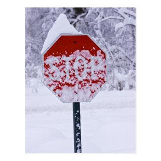 ¡Pare el nevar! Tarjeta Postal