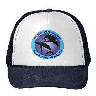 Pare la reserva de la caza de ballenas las ballena gorro