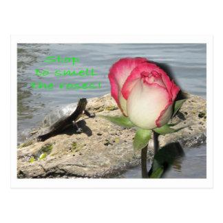 """""""Pare para oler los rosas """" Tarjetas Postales"""