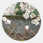 Pared de la flor pegatina redonda