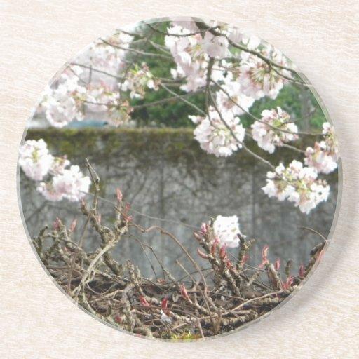 Pared de la flor posavasos diseño