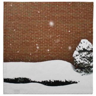 Pared de la nieve servilletas