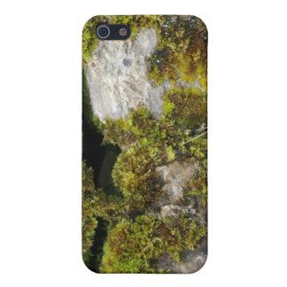 Pared de piedra 3D del musgo iPhone 5 Carcasa