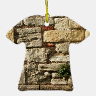 Pared de piedra Con la pequeña planta Ornamente De Reyes