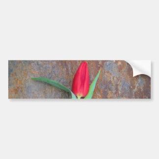 Pared de piedra de Brown del tulipán rojo Pegatina Para Auto