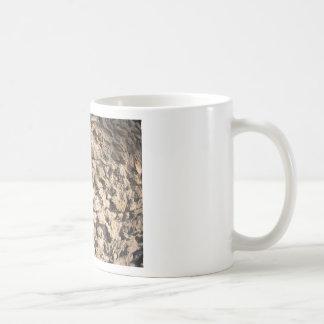 Pared de piedra de las piedras ásperas grandes taza clásica