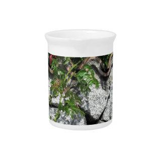 Pared de piedra decorativa con las flores jarras