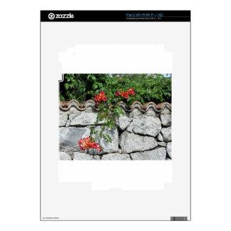 Pared de piedra decorativa con las flores skins para eliPad 2