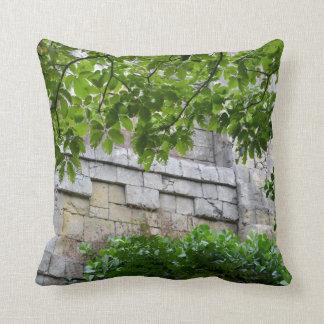 pared de piedra vieja enmarcada en hojas cojín