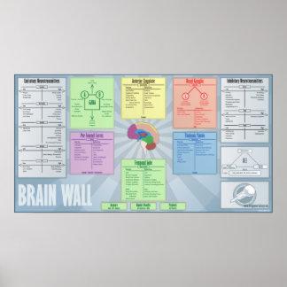 Pared del cerebro póster