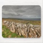 Paredes de piedra de Burren Tapete De Ratones