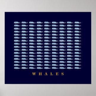 paredes del décor de las ballenas azules póster