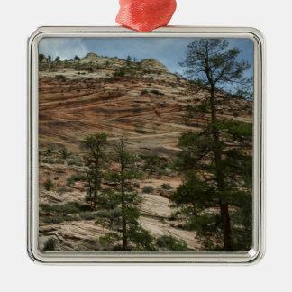 Paredes gastadas de la roca en el parque nacional adorno navideño cuadrado de metal