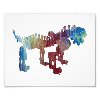 pareiasaurus skeleton photo print